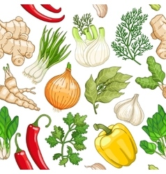 vegetable pattern with herbs on white vector image vector image