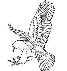 Attacking Eagle vector
