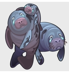 Family of naval seal mom dad and baby crying vector