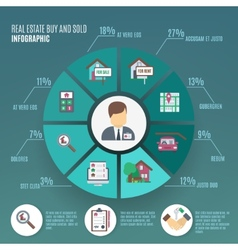 Real Estate Infographic vector image