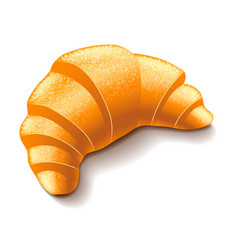 Croissant isolated on white vector image vector image