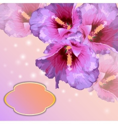 frame with lovely flowers vector image
