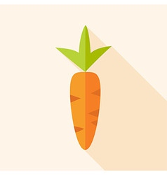 Natural carrot vector image