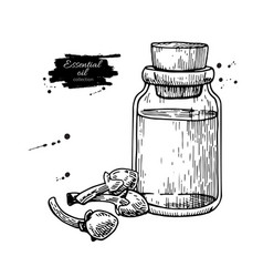 clove essential oil bottle and heap of spices vector image