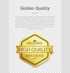 golden quality exclusive best choice high standard vector image