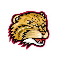 manul or pallas cat head mascot vector image