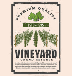 Premium quality vineyard winemaking factory vector