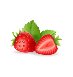 Realistic sweet strawberry set with green leaves vector