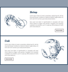 Seafood and crustacean icons vintage vector