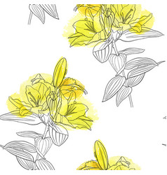 Seamless pattern with lily flower vector