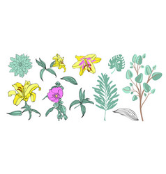 set of hand drawing flowers vector image