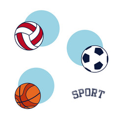 sport equipment and accesories vector image