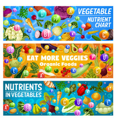 vegetables and organic veggies healthy food vector image