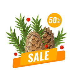 winter sale banner with with pine cone and fir vector image