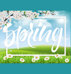 lettering spring on landscape background vector image vector image