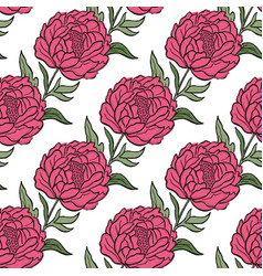 seamless floral pattern peony flowers and vector image vector image