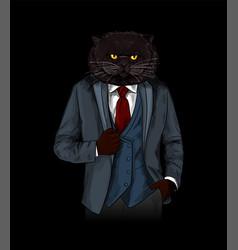 anthropomorphic cat dressed in elegant grey suite vector image