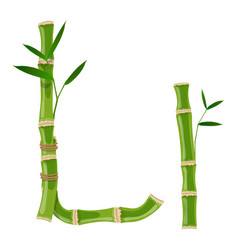 bamboo letter l vector image