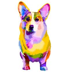 Colorful corgi dog on pop art style vector
