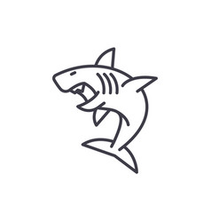 great white shark line icon sign vector image