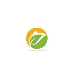 green leaf sun shine eco logo vector image