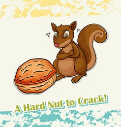 Idiom hard nut to crack vector image