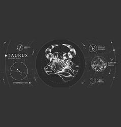 Magic card with astrology taurus zodiac sign vector