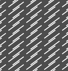 Monochrome pattern with diagonal doubled stripes vector image