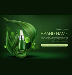 natural cosmetics skin care serum beauty product vector image