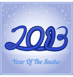 New Year card with a blue snake vector image