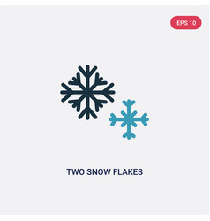 Two color two snow flakes icon from shapes vector