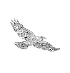 hand-drawn crow with ethnic pattern coloring page vector image