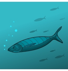 Shoal of Fish vector image vector image