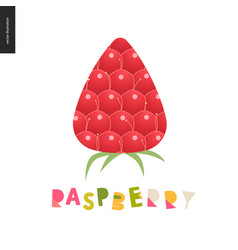 food patterns fruit raspberry postcard vector image