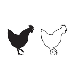 Image of an chicken vector