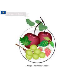Kosovo fruit delicious apple grapes and raspber vector