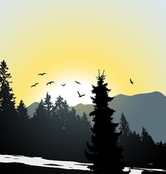 Mountain view Flying birds vector
