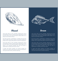 Mussel and bream fish set vector
