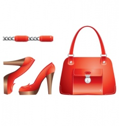 bags and shoes vector image vector image