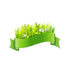 grass and flowers in green ribbon vector image vector image