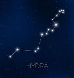 Hydra constellation in night sky vector image