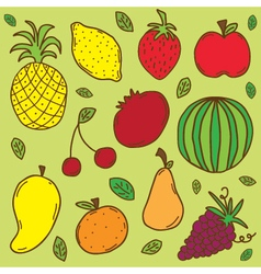 fruit set colorful vector image