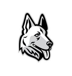 alsatian dog mascot vector image