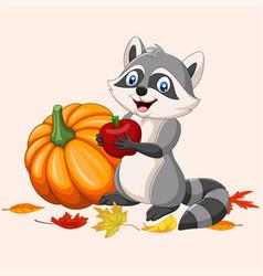 Cartoon raccoon holding red apple and pumpkin vector