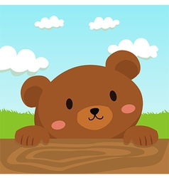 Close up Brown Bear Cartoon in Field vector