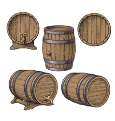 Collection of wine rum beer classical wooden vector image