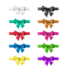 colorful silk bow set with ribbons decoration vector image