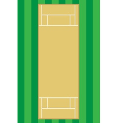Cricket pitch vector