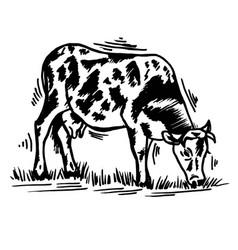 Doodle pet on a farm cow black outline vector