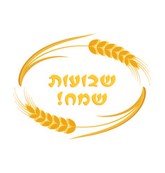 Jewish holiday of shavuot ears wheat frame vector